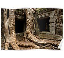 Ta Prohm Angkor Wat Cambodia Poster