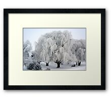 Winter's Frosted Willow  Framed Print