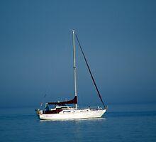 Sail Boat Afloat by Tina Hailey