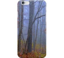 Autumn Blues iPhone Case/Skin