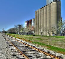 Grain Mills at Grapevine  by John  Kapusta