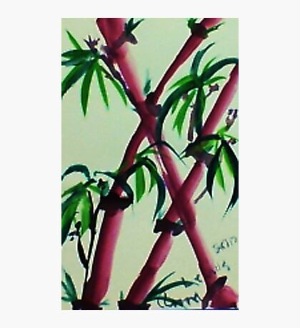 Bamboo #2, watercolor Photographic Print