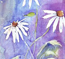 Daisies in my garden by Maree Clarkson