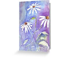Daisies in my garden Greeting Card