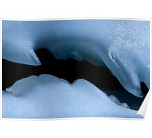 Natures Ice Sculpture Poster
