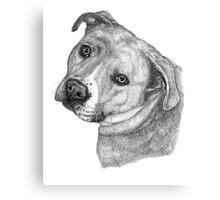 Adopt Love Canvas Print