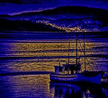 Night Port by Steve Walser