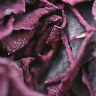 Purple Death by randomness