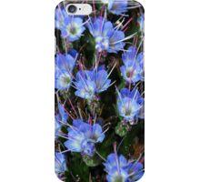 Blue - Africa iPhone Case/Skin