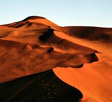 Dramatic Dunes, Namibia by Carole-Anne