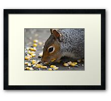 Collecting Food Framed Print