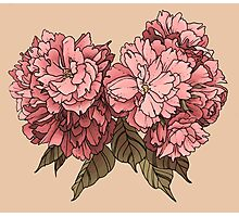 Botanical - Tattoo Flash Photographic Print