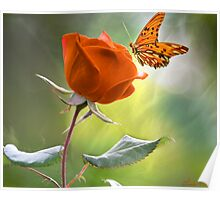 The Flower and the Butterfly Poster