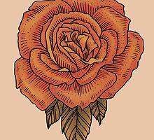 Rose by Amanda Zito