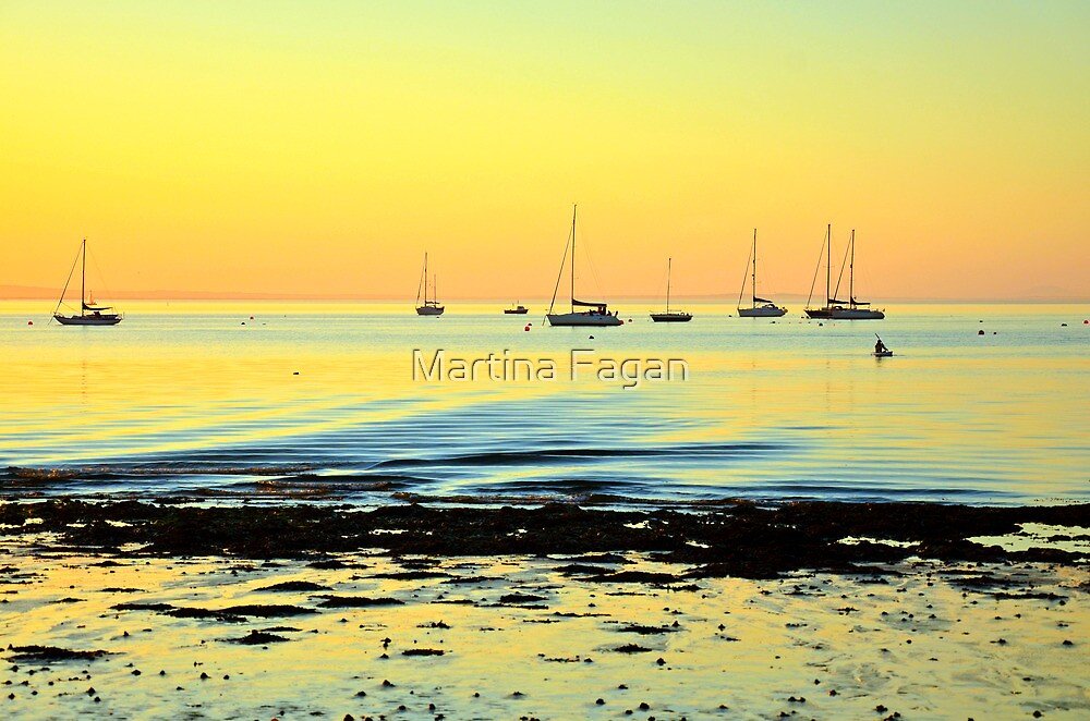 A Golden Glow by Martina Fagan