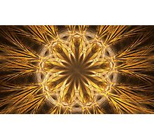 Gold Petals Photographic Print