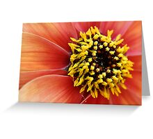 Fine Detail Greeting Card