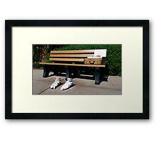 Forrest Gump Bench Framed Print