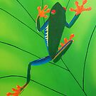 Red Eyed Tree Frog by Joann Barrack
