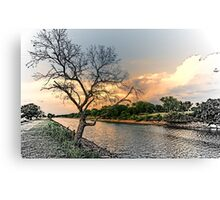 River Tree Canvas Print