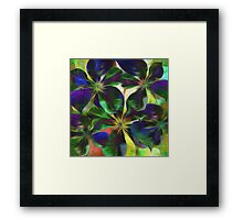 Colorful Clematis Abstract Framed Print