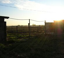 Sunset at the ranch by MsFit1958