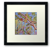 Mossy Oak At The Golden Hour Framed Print