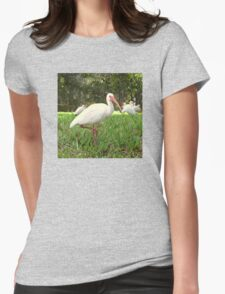 American White Ibis Birds in Orlando, Florida Womens Fitted T-Shirt