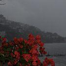 Waiting For The Hurricane- It's Getting Darker - Esperando El Ciclón by Bernhard Matejka