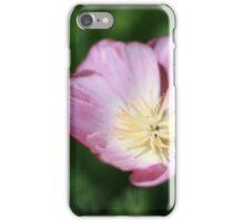 Bright sunshine on light mauve iPhone Case/Skin