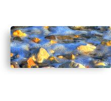 beach stones... Canvas Print