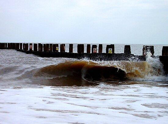The Egotistical Wave! by DCLehnsherr