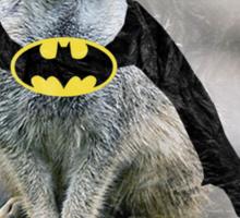 BatKat:The Meer Knight Sticker