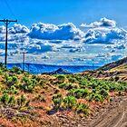 One Desert Drive by SRLongstroth