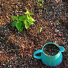 Blue Pot by © Joe  Beasley IPA