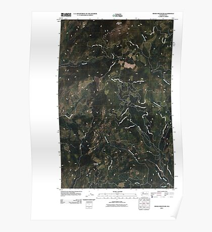 USGS Topo Map Washington State WA Moses Mountain 20110404 TM Poster