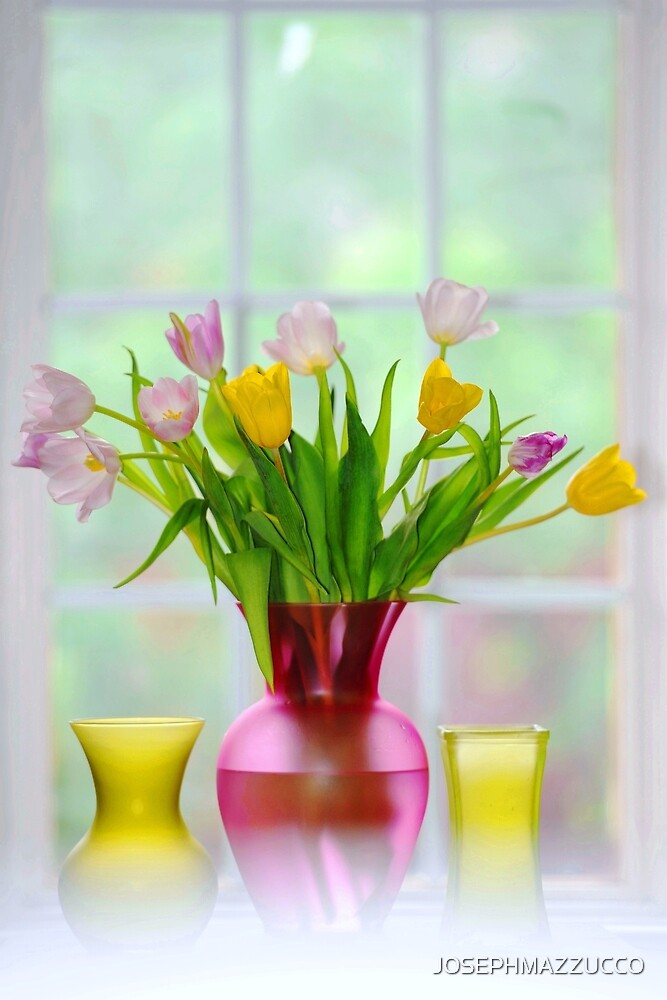 garden window and tulips.. by JOSEPHMAZZUCCO