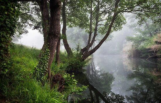 Rivière L'Alzon by Mieke Boynton