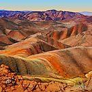 Arkaroola Landscape by Peter Hammer