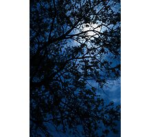 Blue Caress of Feel Photographic Print