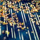 Autumn Potpourri Delight by kahoutek24