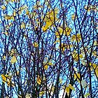 Blue And Yellow Autumn by kahoutek24