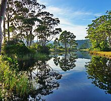 Reflections of Captain Cook Creek, Bruny Island, Tasmania by PC1134