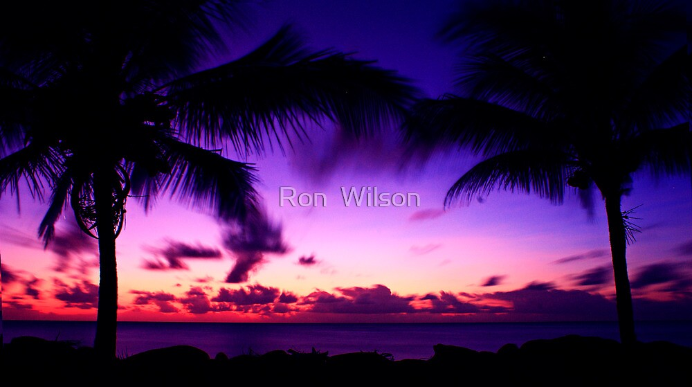 Fly Fish Point by Ron  Wilson