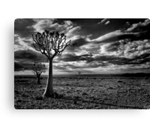 Where Only the Harshest Survive Canvas Print