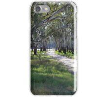 A path through the bush iPhone Case/Skin