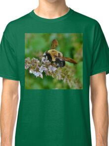 The Attraction of Bees Classic T-Shirt