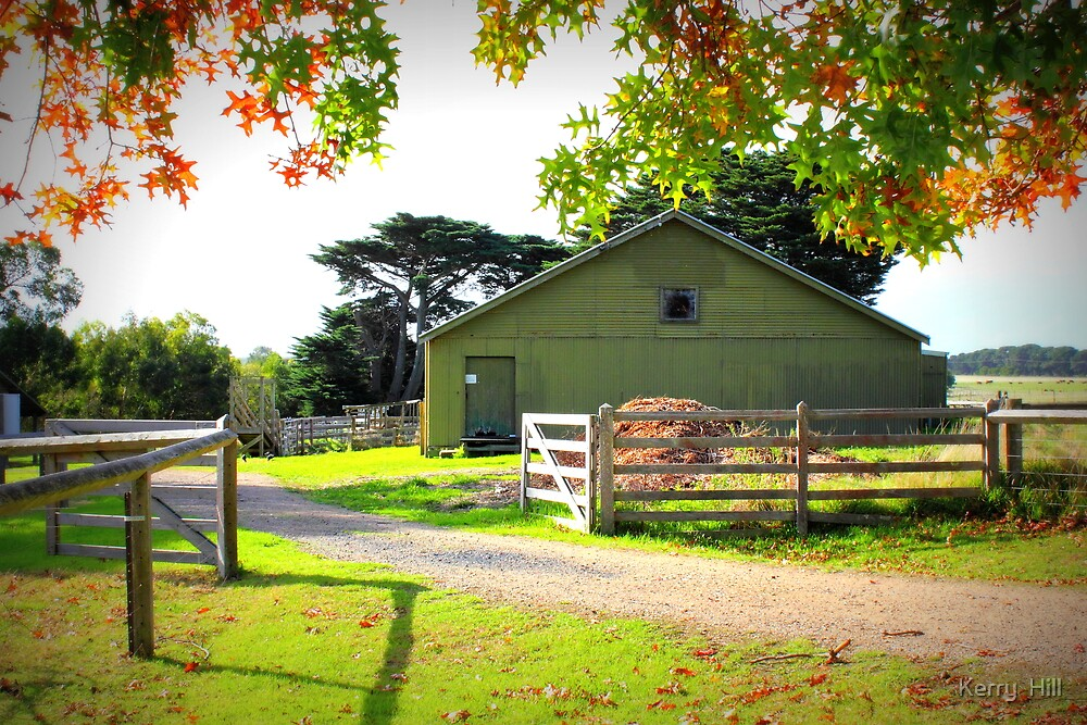Old Shearing Shed in Autumn by Kerry  Hill