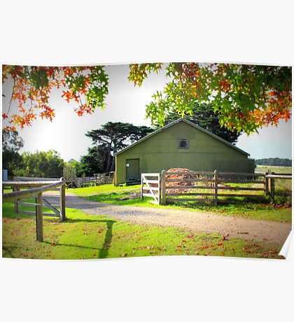 Old Shearing Shed in Autumn Poster