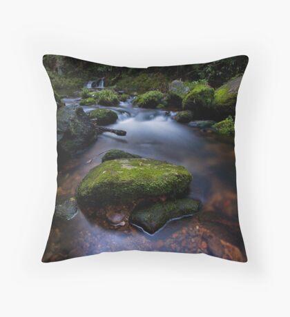 Old Kaimai stream moss Throw Pillow